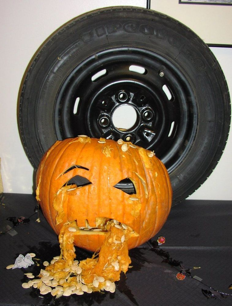 pumpkin road kill.jpg